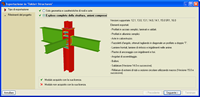 Screenshot Esportazione in Tekla® Structures